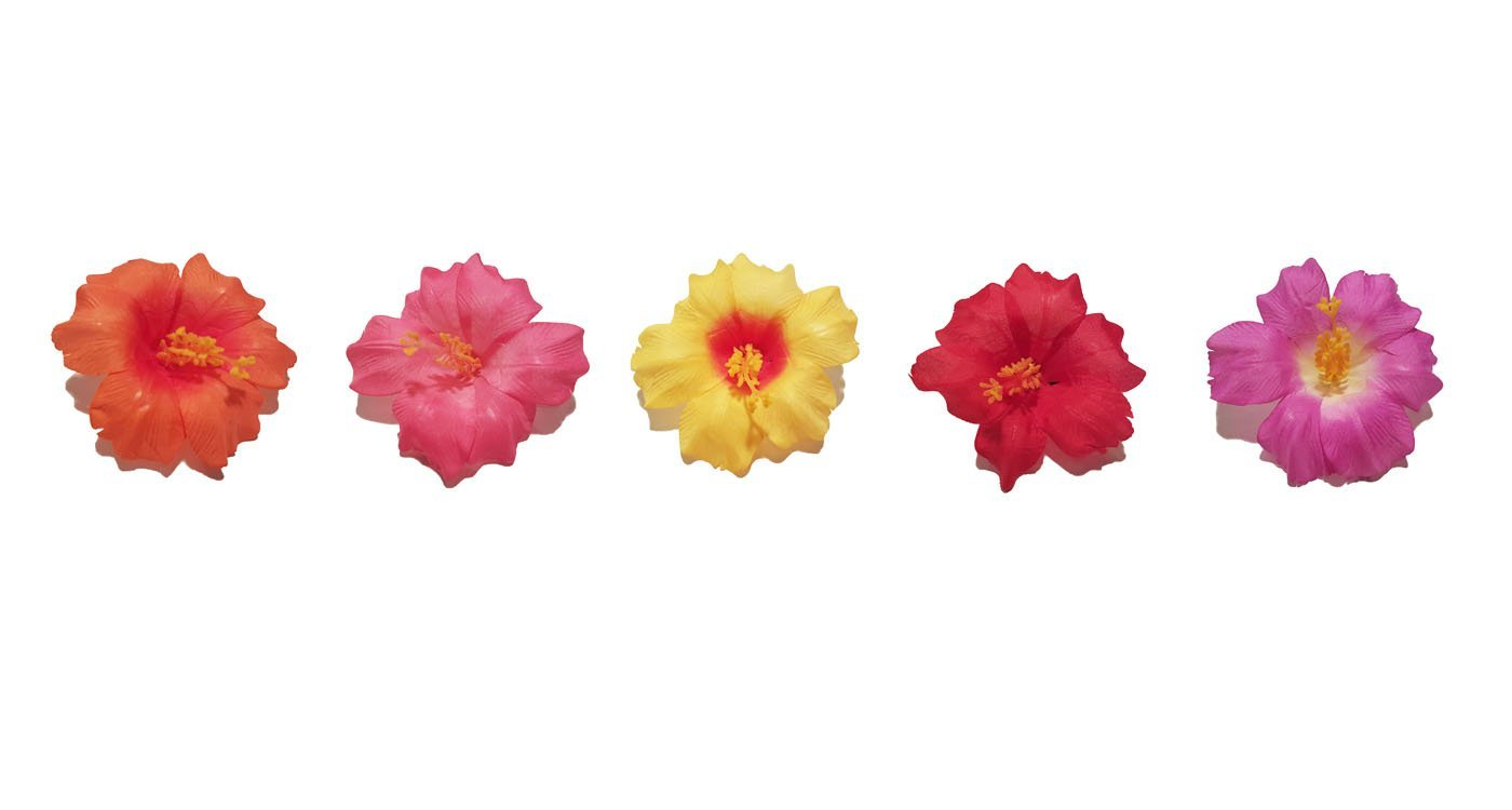 Assorted Hibiscus Hair Clips Set Of 5 Red Elephant Gifts